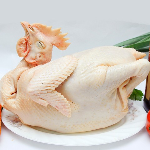 Thịt gà ta